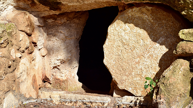 Why Nobody Can Rationally Deny Jesus' Resurrection